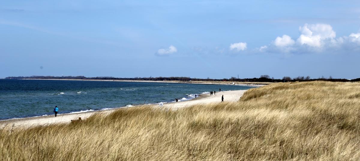 Dünenmeer Fischland Ostseelounge